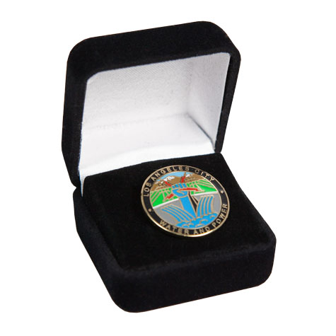 DWP Lapel Pin Gift Set